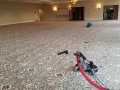 carpet-cleaning-18