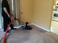 carpet-cleaning-21