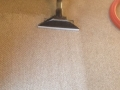 carpet-cleaning-22