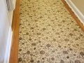 carpet-cleaning-27