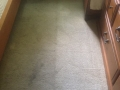 carpet-cleaning-29