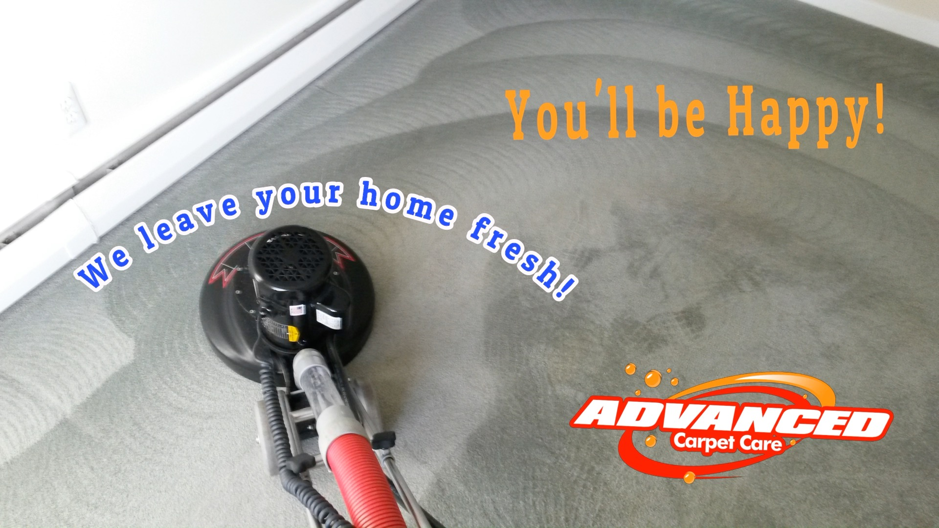 long island carpet cleaning